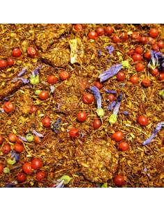 Rooibos Frutas y Canela