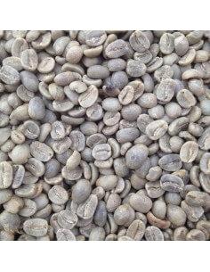 Café Verde Robusta Uganda Busigo