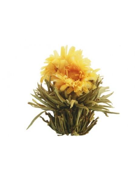 Flores de Té